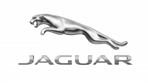 Jaguar animal logo design