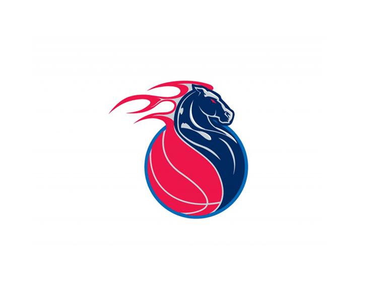 Sports Logo Ideas Make Your Own Sports Team Logo Looka