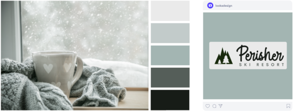 a cold grey winter color palette