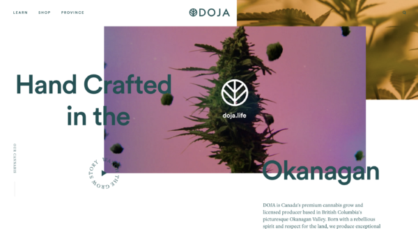 Doja cannabis website