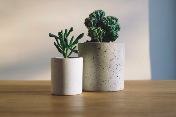 make concrete planters at home to sell online