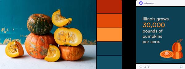 bright fall color scheme