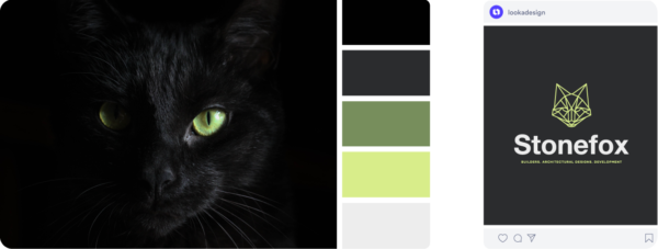 black cat color palette