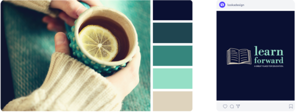 turquoise and black color palette