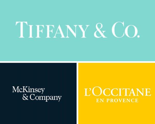 serif font brands